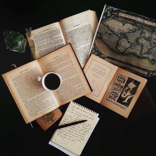 Entremés literario