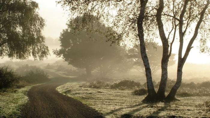 Por los caminos delsur